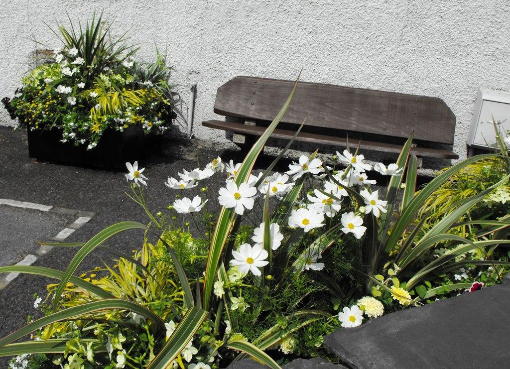 Cumbria in Bloom 2014 (63) resized