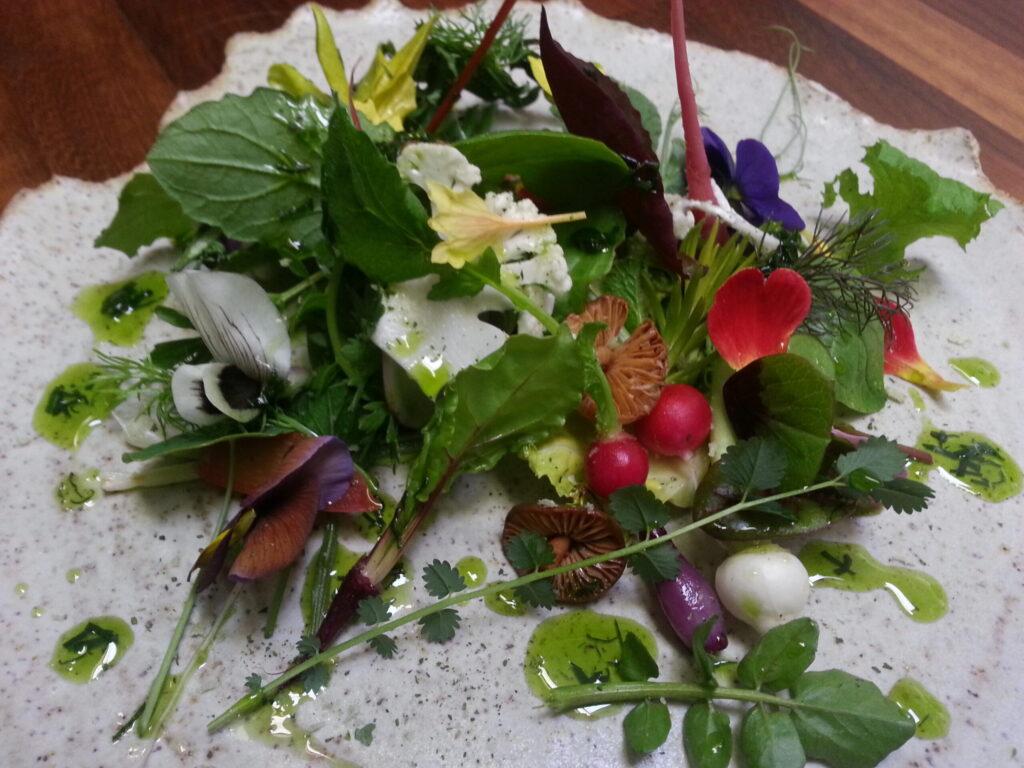 spring offerings 2